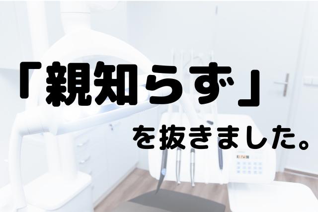 f:id:kinoko36:20190712231239p:plain